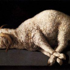 L'agnello pasquale, Grazia Deledda. Novella